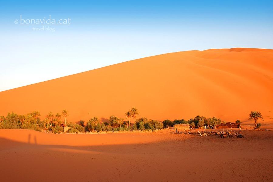 El campament està situat sota una enorme duna