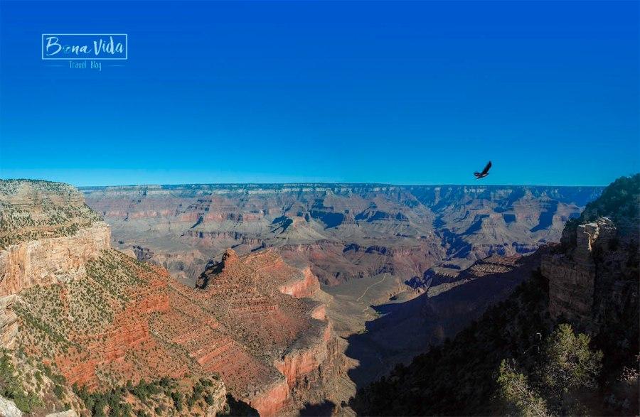usa grand canyon 06