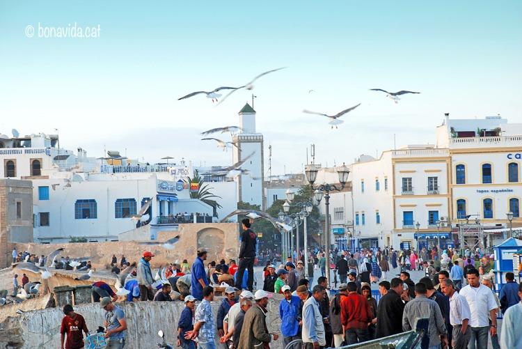 Marroc Essaouira gent
