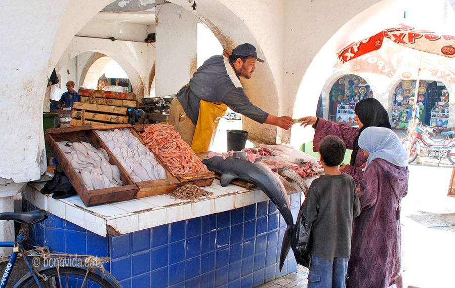 Marroc Essaouira ven peix