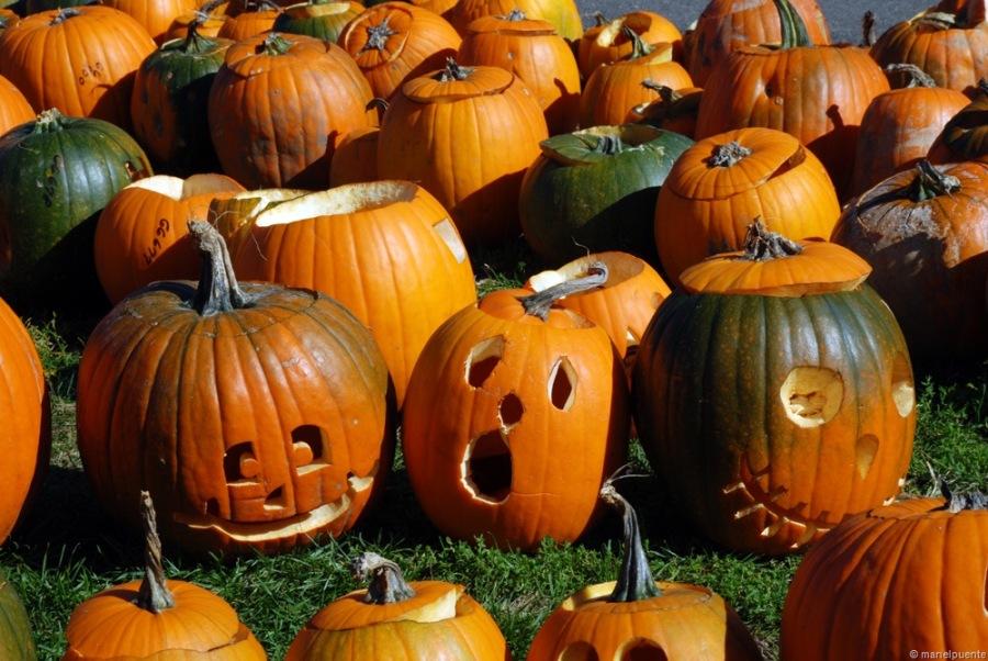 Celebrar Halloween als Estats Units és fantastìc