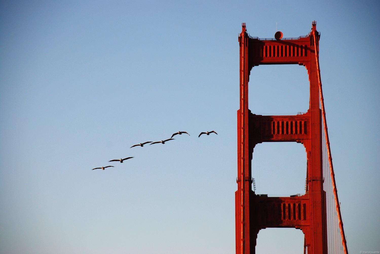Golden-Gate_04.jpg