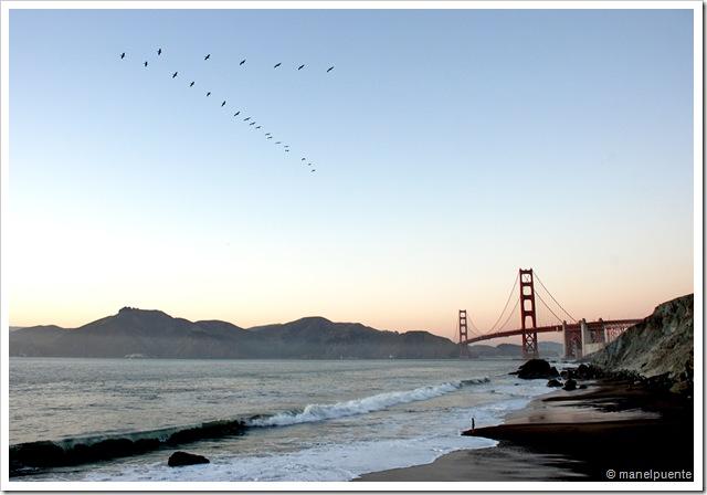 Golden Gate_08