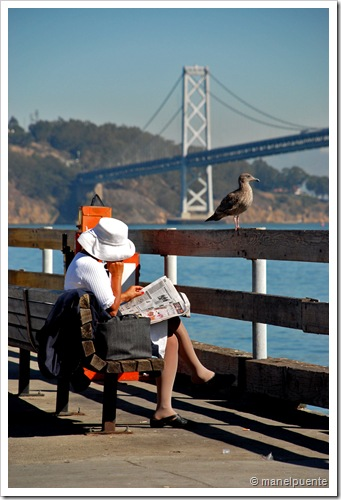 Oakland Bay Bridge_1