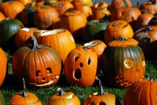 Fira de carbasses de Halloween a Boston, USA.