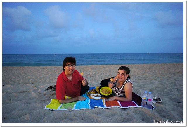 picnic platja 2