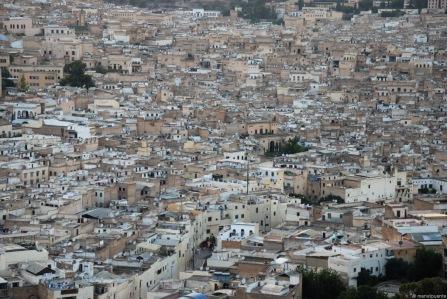 marroc fes ciutat