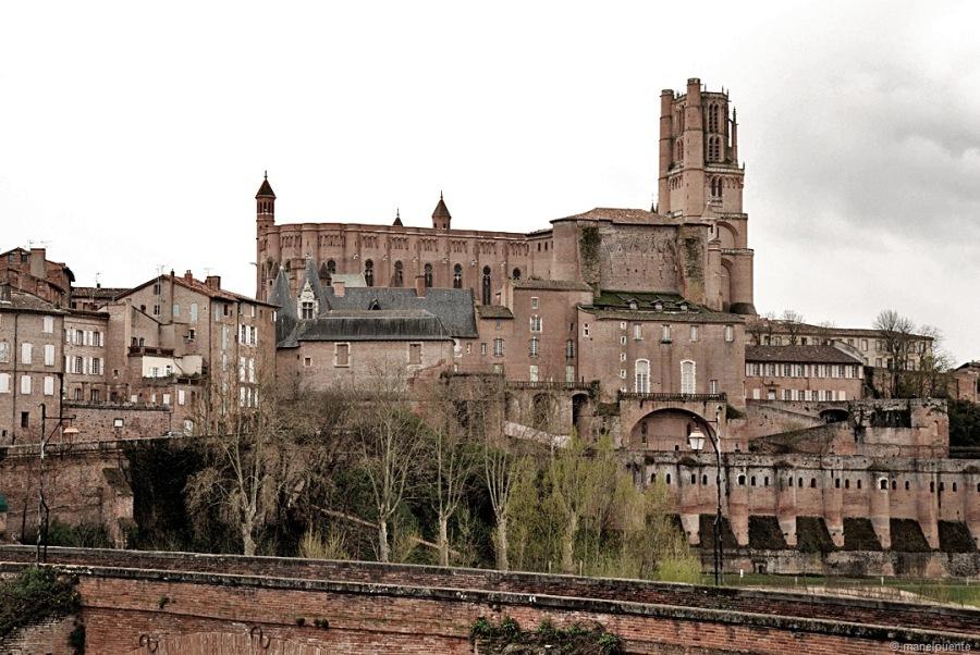 faana-Santa-Cecilia-Albi-2.jpg