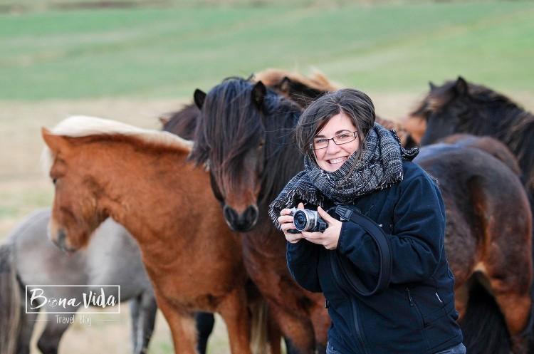 islandia cavalls-18