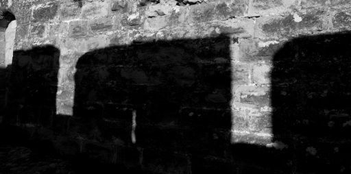 Castell Carcassonne detall 3