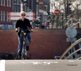 carril_bici_amsterdam