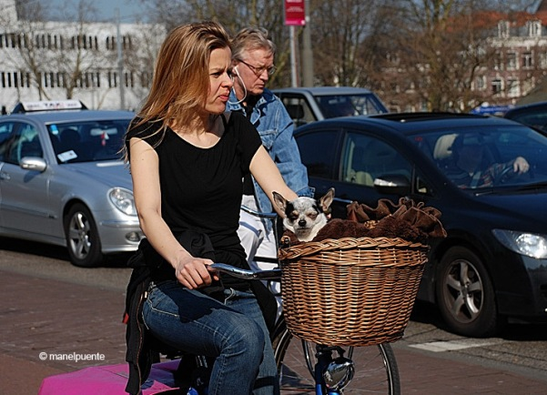 gos_bici_amsterdam