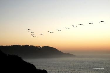 SF_Golden Gate_09