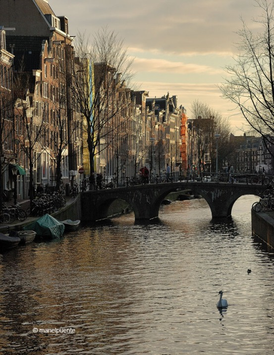 canals_amsterdam