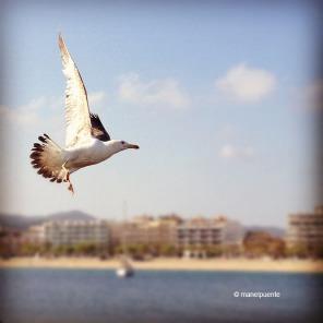 instagram_18