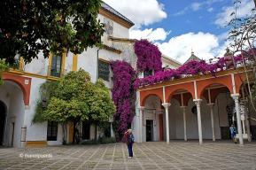 Pati de la Casa de Pilatos. Un model de Palau de la Sevilla del Segle d'Or