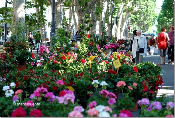 Béziers. Languedoc-Roussillon. França