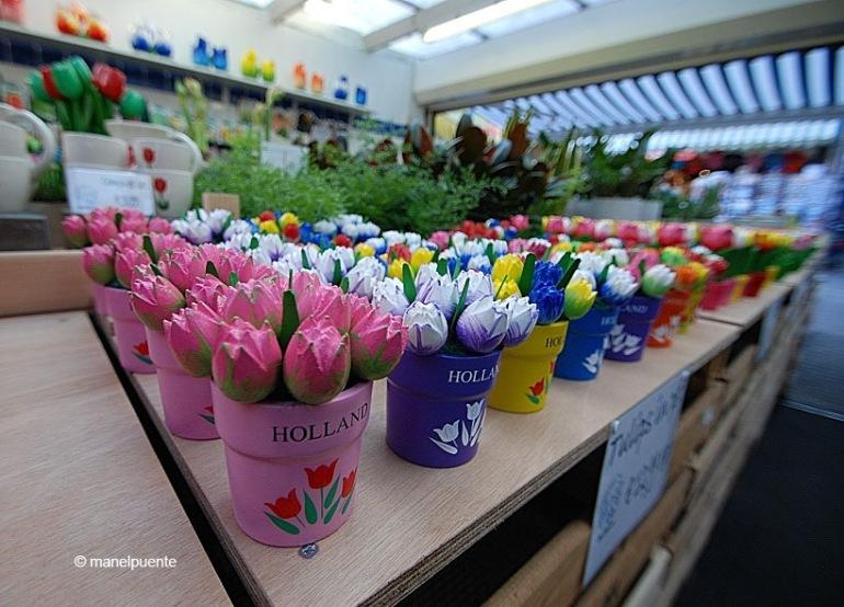 Tulipes al Mercat de les flors