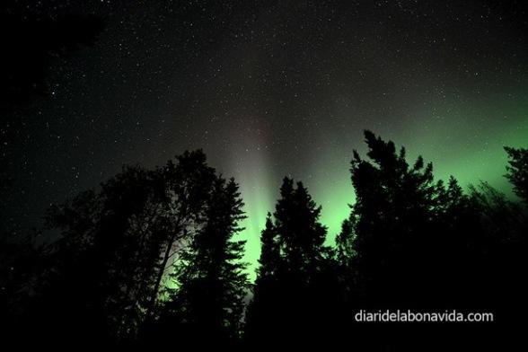 Aurores boreals
