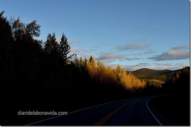 06_alaska_carretera_chena