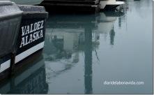 10_alaska_valdez_port_aigua