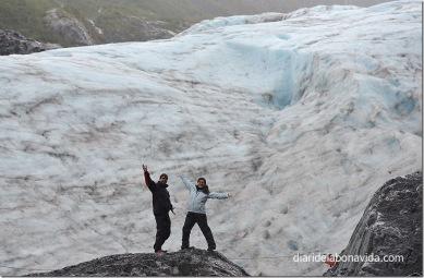 Davant la glacera Exit. Alaska