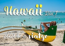 hawaii diari posts bv 01