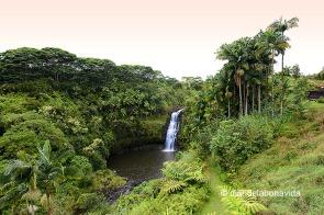 L'hotel està situat davant de la cascada Kulaniapia, al ben mig d'un paratge selvàtic