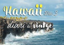 hawaii diari posts bv 03