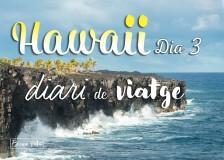 hawaii diari posts bv 03