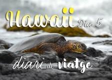 hawaii diari posts bv 05