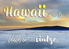hawaii diari posts bv 06