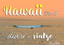 hawaii diari posts bv 08
