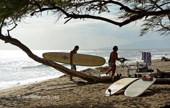 Els surfers passen hores i hores a la platja
