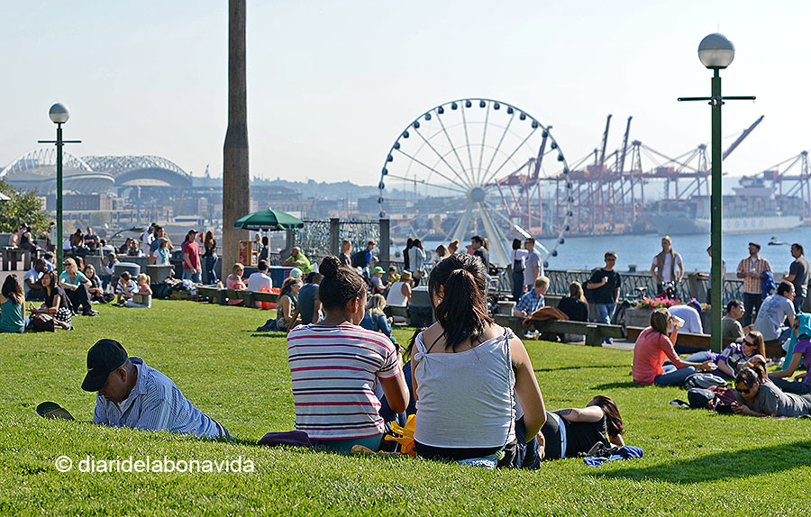 Quin ambient a Victor Steinbrueck Park