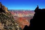 Contemplant el meravellós Grand Canyon