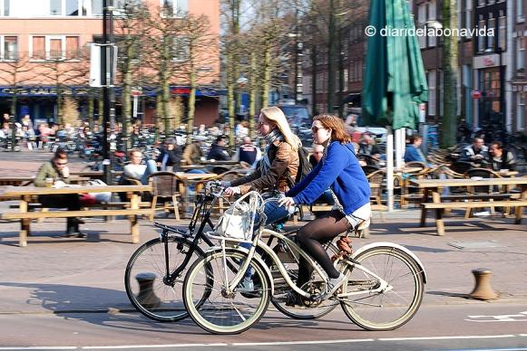 amsterdam340_DBV