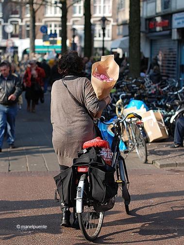 bici_flors_albertcuypmarkt