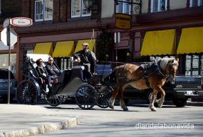 Molts turistes prefereixen pujar a les carrosses