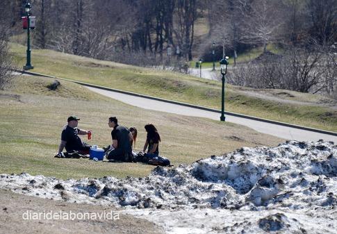 Encara quedava neu de la darrera setmana al Parc Plaines d'Abraham. Qui ho diria que aquí va tenir lloc una de les batalles més importants de la història canadenca.