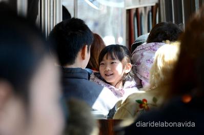 Reaccions dins del transport públic