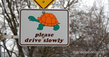 S'ha d'anar a pas de tortuga
