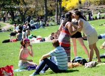 Els amics es reuneixen al parc