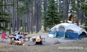 Les zones d'acampada són genials