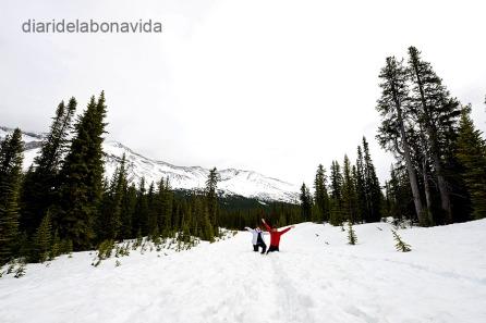 En algunes zones ens trobem moltíssima neu