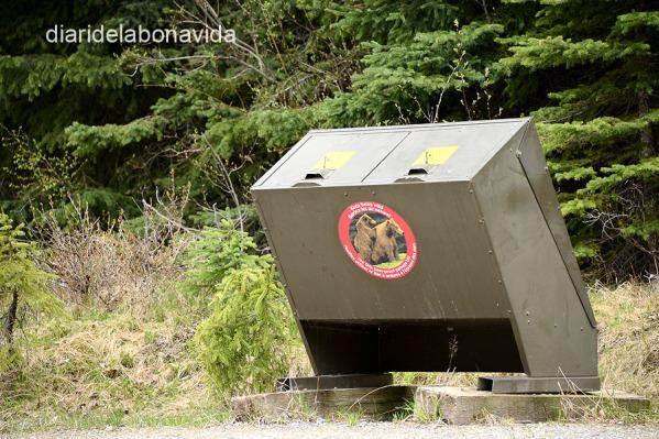 Prohibidíssim deixar menjar o escombreries fora de tendes o caravanes, poden atraure óssos