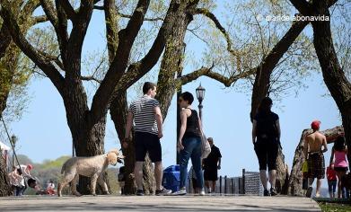 canada2594_budapest park