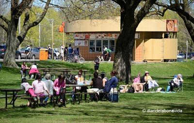 Les famílies venen a passar el dia i fer el picnic