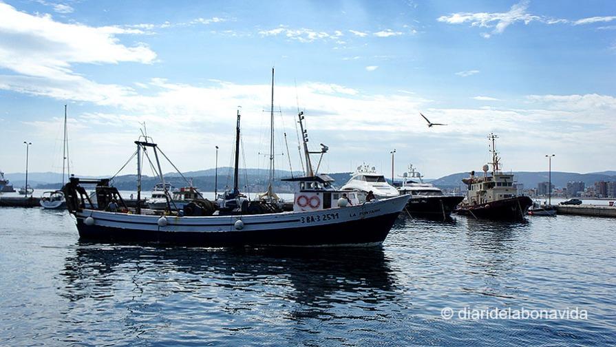 Port Palamós 04