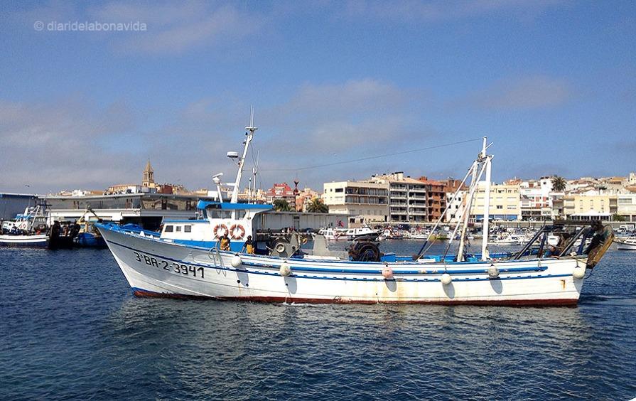Els vaixells arriben a port amb el peix fresquíssim!